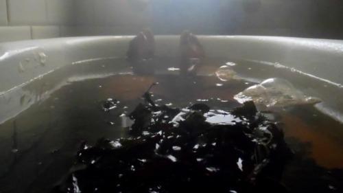 voga seaweed bath
